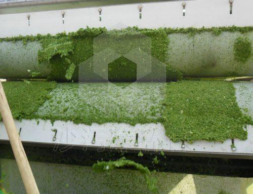 兰州饲料厂蔬菜脱水